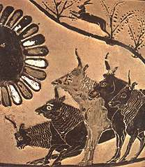 The Oxen of the Sun