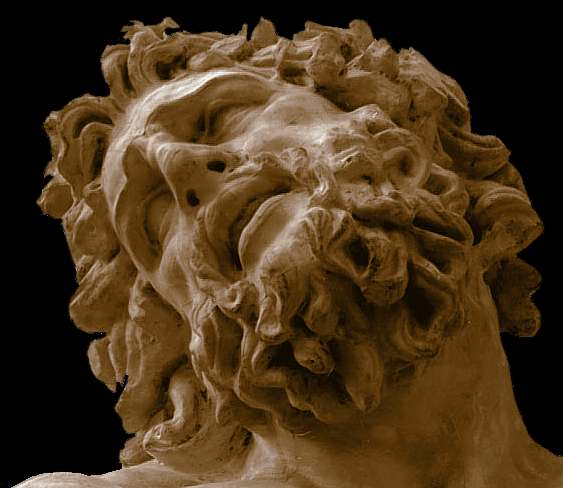 laocoon face - photo #5